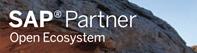 SAP Partner Open Ecosystem