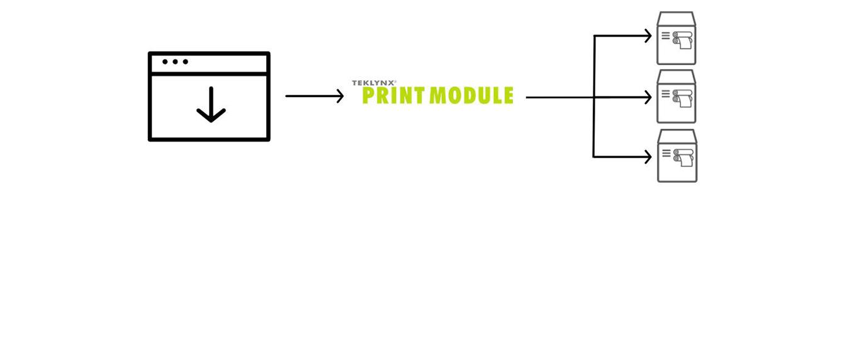 PRINT MODULE - תוכנה להדפסת תוויות